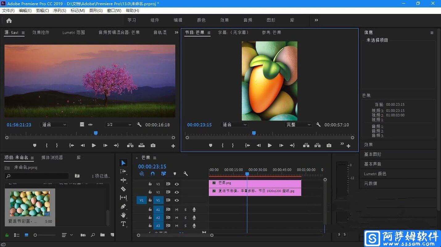 Adobe Premiere Pro CC 2019 v13.1.2.9 中文直装特别版