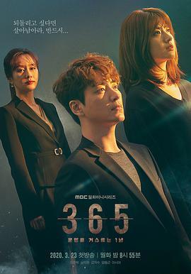 365:逆转命运的1年的海报