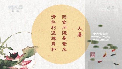《百家讲坛》 20200510 中医话节气 12 大暑