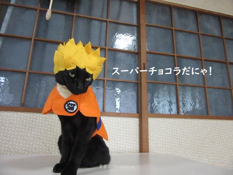 日本黑猫动画角色COS_和邪社02