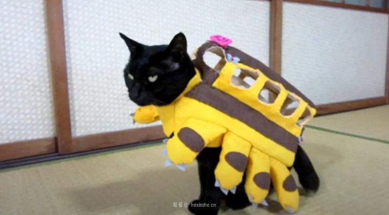 日本黑猫动画角色COS_和邪社11