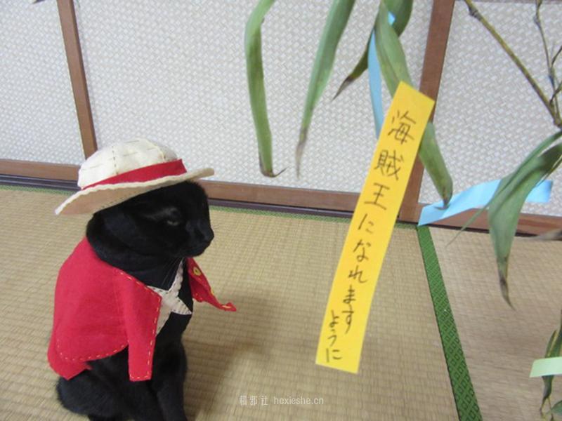 日本黑猫动画角色COS_和邪社19