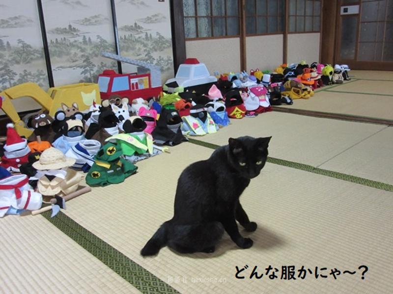 日本黑猫动画角色COS_和邪社26