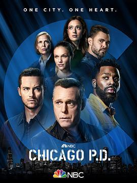 芝加哥警署 第九季的海报