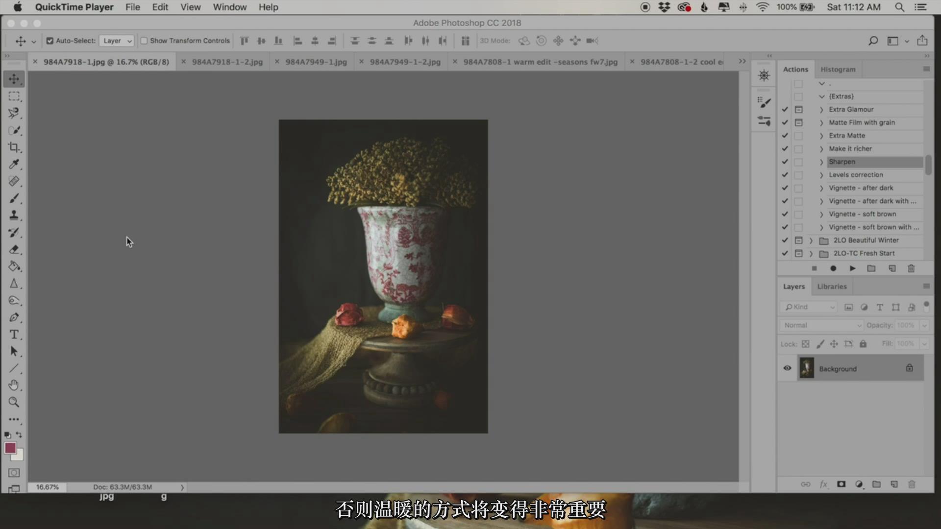 摄影教程_Lenslab –静物花卉产品摄影掌握色彩突破艺术界限研讨会-中文字幕 摄影教程 _预览图12