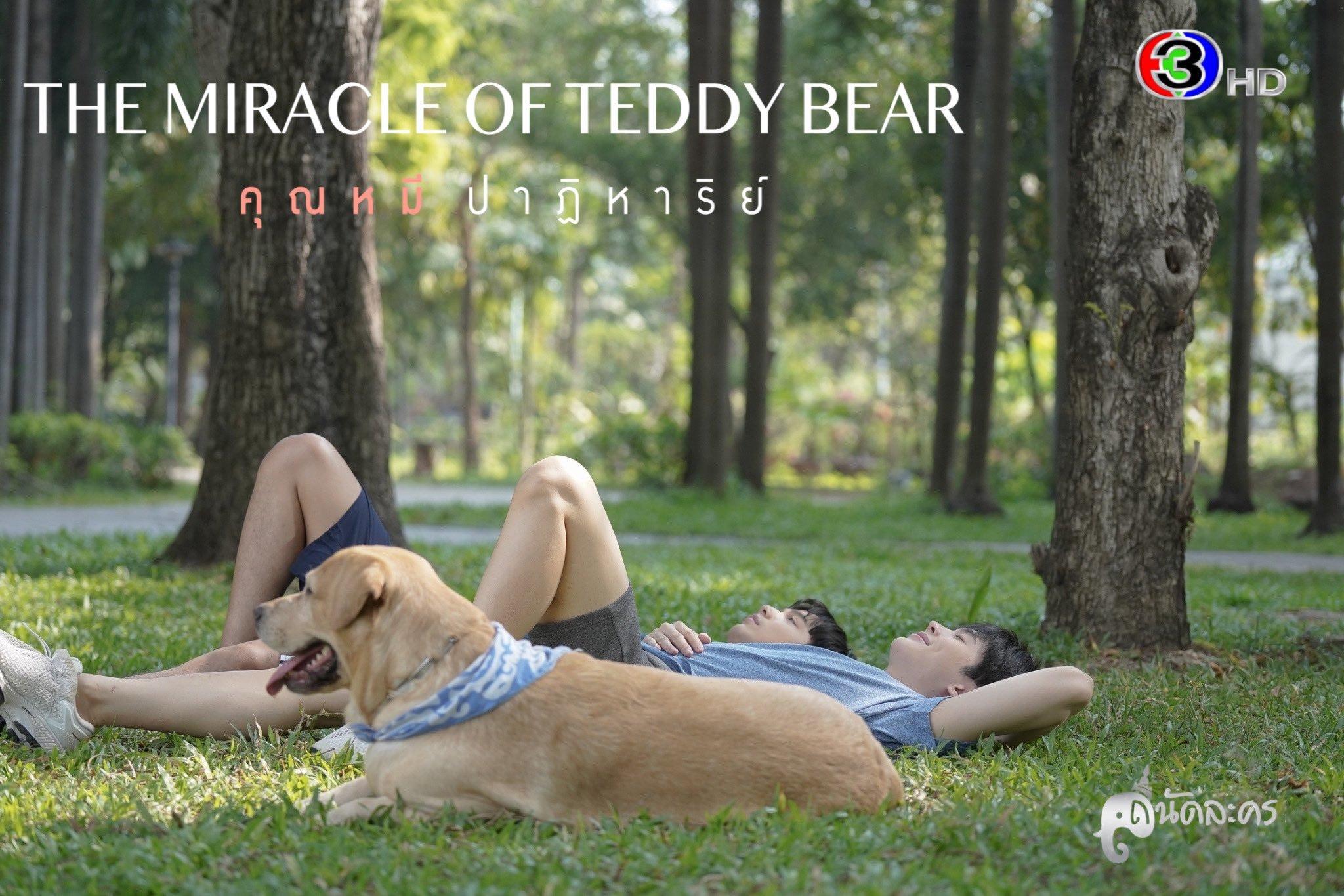 《奇迹熊先生》的剧照10