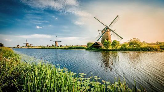 百无禁忌的荷兰,到底有多开放?