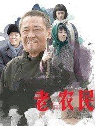 老农民(国产剧)